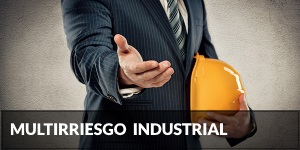 Multiriesgo Industrial